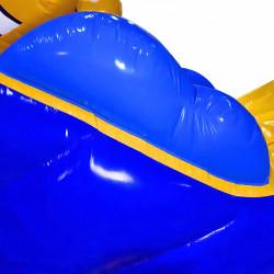 Location Parcours Aquatique Gonflable Poisson Clown