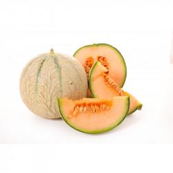 Mix à Glace Italienne Melon