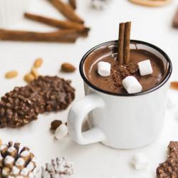 Chocolatière Professionnelle 30L