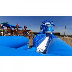 Achat Toboggan Gonflable Aquatique Baleine