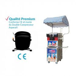Achat Machine à Glace Italienne Pro Silver 3300w : qualité premium
