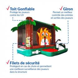 Achat Château Gonflable Savant : qualité professionnelle