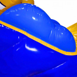 Achat Parcours Aquatique Gonflable Poisson Clown